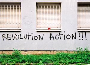 Elephant Revolution Action wrap 2 - Emma Leach